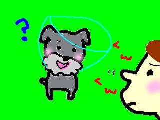 snap_jirokkosan_2008125183551.jpg