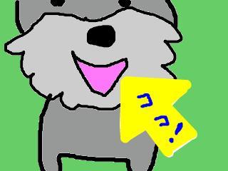 snap_jirokkosan_2008125184026.jpg