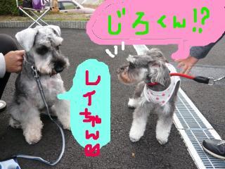 snap_jirokkosan_2009101232829.jpg