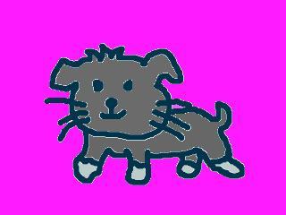 snap_jirokkosan_200910231521.jpg