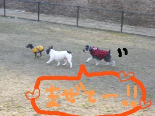 snap_jirokkosan_200910233237.jpg