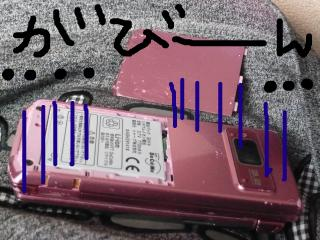 snap_jirokkosan_2009116221312.jpg