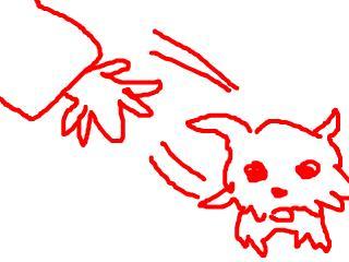 snap_jirokkosan_200914233210.jpg