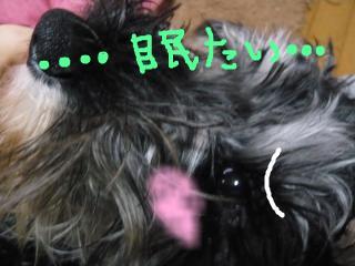 snap_jirokkosan_200915113031.jpg