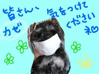 snap_jirokkosan_200915121519.jpg