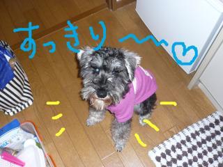 snap_jirokkosan_2009161501.jpg