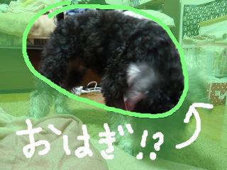 snap_jirokkosan_200916152132.jpg
