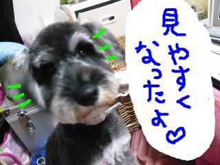 snap_jirokkosan_20091615349.jpg