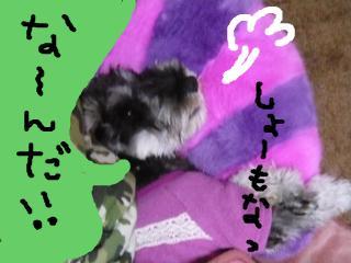 snap_jirokkosan_200920221625.jpg