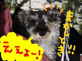 snap_jirokkosan_200920222239.jpg
