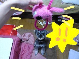 snap_jirokkosan_200921221330.jpg