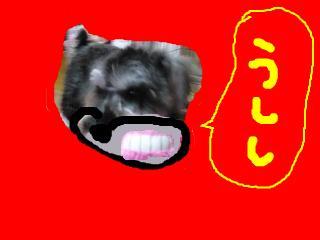 snap_jirokkosan_200921222630.jpg