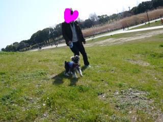 snap_jirokkosan_20093420444.jpg