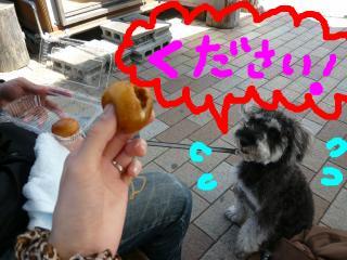 snap_jirokkosan_200941232621.jpg