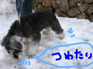 snap_jirokkosan_200941233021.jpg