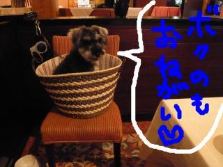 snap_jirokkosan_200941234544.jpg