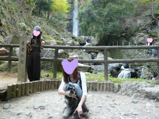 snap_jirokkosan_200941235741.jpg