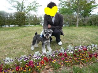 snap_jirokkosan_200952192824.jpg