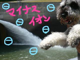 snap_jirokkosan_200970164724.jpg