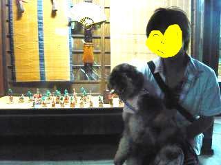 snap_jirokkosan_20097019835.jpg
