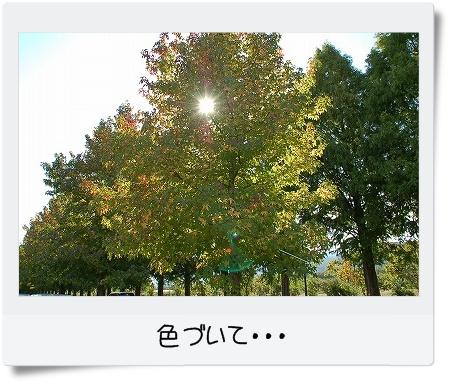 syu081028takashima01-1.jpg