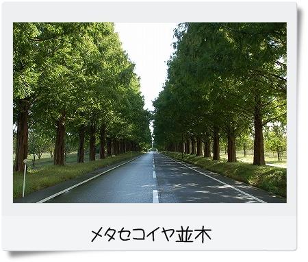 syu081028takashima10-1.jpg