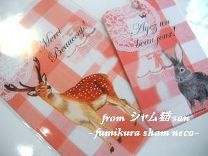card_fumikura_sham_neco2008b