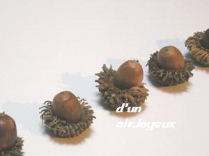 oak-nuts-2s