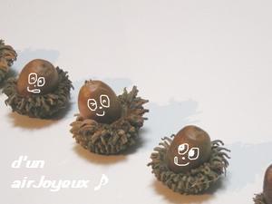 oak-nuts-3s.JPG