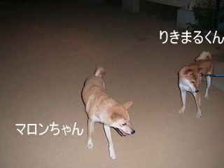 DSCF4695.jpg