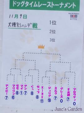 08-11-09_14a.jpg