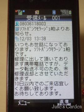 08-12-03_19.jpg