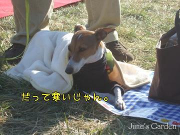 09-01-04_14a.jpg