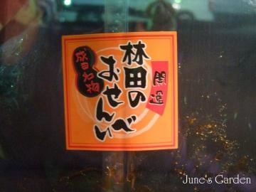 09-01-11_44.jpg