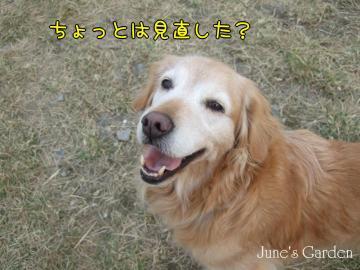 09-01-18_022.jpg