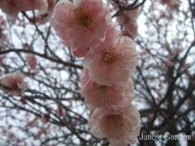 09-03-01_04.jpg