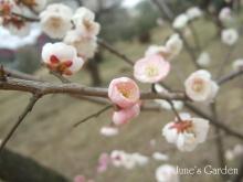 09-03-01_12.jpg