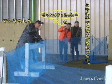 09-03-15_31.jpg