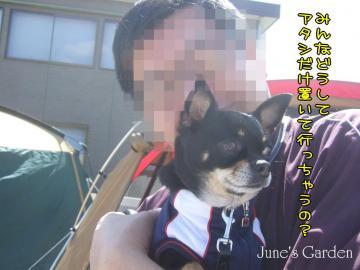 09-03-15_47.jpg