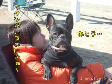 09-03-15_53.jpg