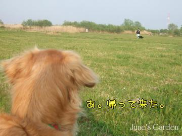 09-04-12_11.jpg