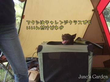 09-04-19_006.jpg