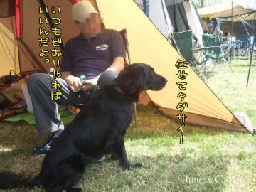 09-04-19_030.jpg