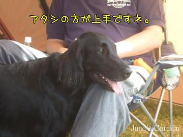 09-04-19_031.jpg