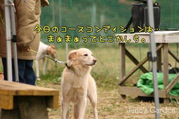 20081109_99_1.jpg