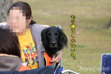 20090222_0269.jpg