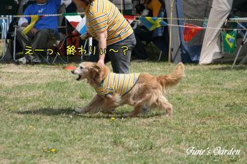 20090419_1232.jpg