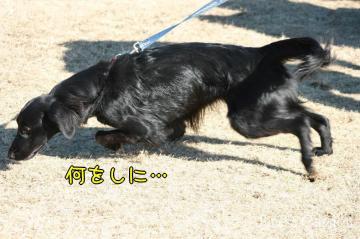 2009_02_01_024.jpg