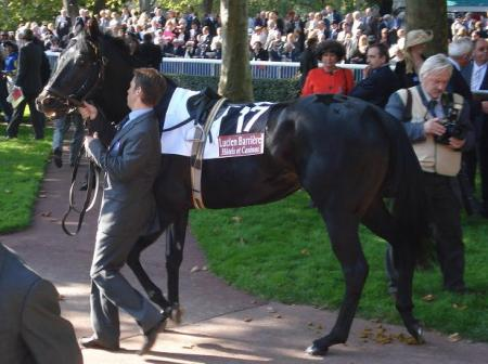 Kingsgate Native
