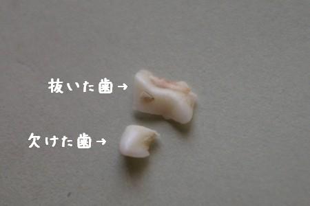 20050809102413.jpg